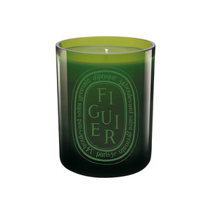 Medium diptique fig candle