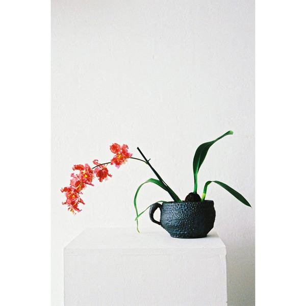 Large grey mug plantermatthias kaiser
