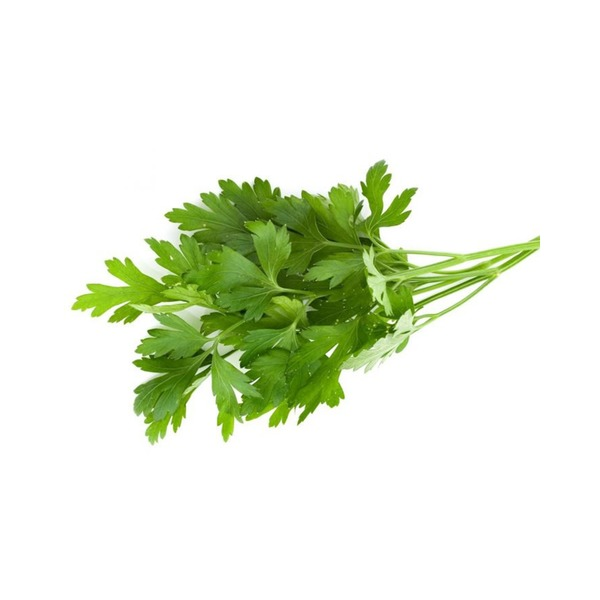 Large planet organic parsley