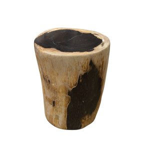 Medium andrianna shamaris high quality petrified wood side table