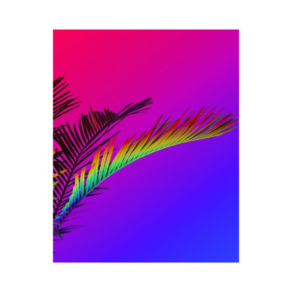 Large rainbow palm annka kultys