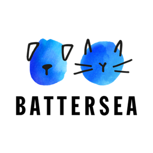 Medium battersea