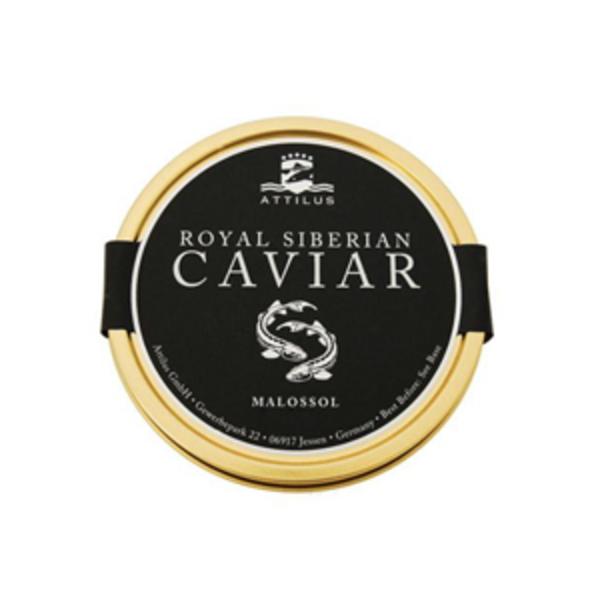 Large royal siberian caviar