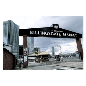 Medium billingsgatemarket