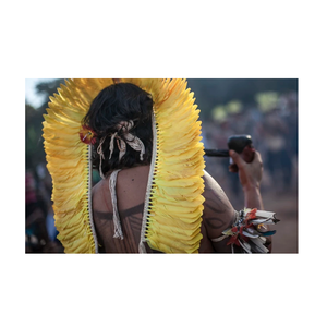 Medium how to visit one of brazil s indigenous amazonian tribes culture trip
