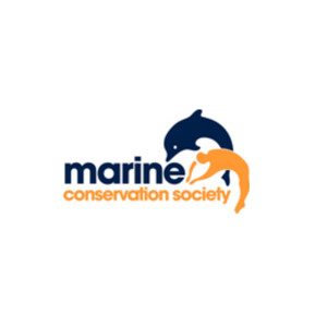Medium marine conservation