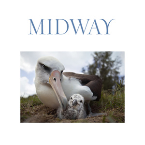 Medium midwayfilm  midway   donate