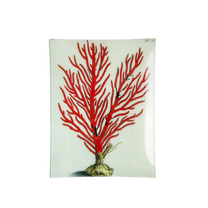Medium coral rectangulartrayjohn derian