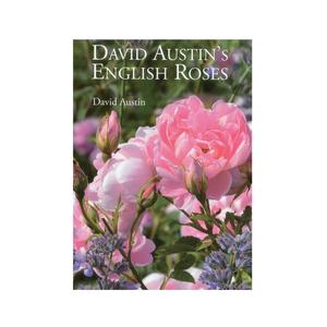Medium amazon david austin s english roses