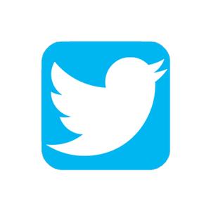 Medium twitter logo21