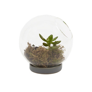 Medium chive   table top sphere   clear