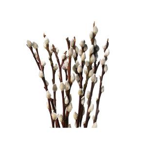 Medium pussy willow