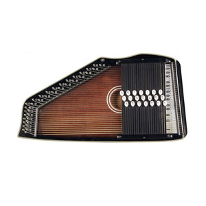Medium autoharp