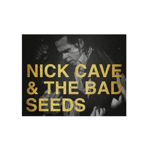 Medium nick cave tour