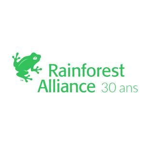 Medium rainforest 1
