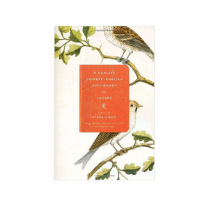 Medium book 1