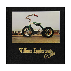 Medium william eggleston s guide