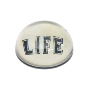 Medium john derian life paperweight