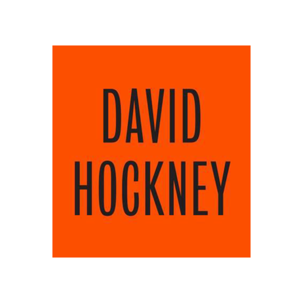 Large david hockney hardback
