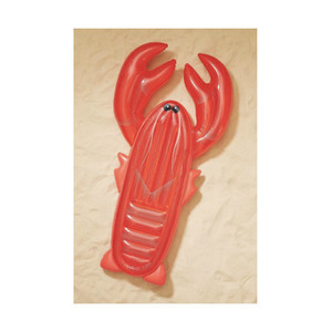 Medium urban outfitters sunnylife lie on lobster pool float