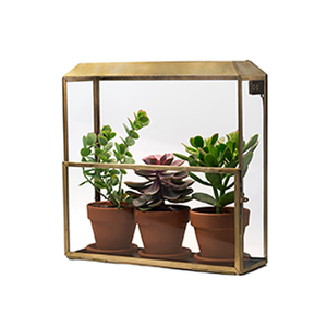 Medium modern sproutgrowhouse
