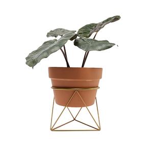 Medium eric trine short octahedron ring planter in zinc